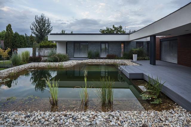 T-shape house pool